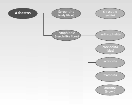 Asbestos classes