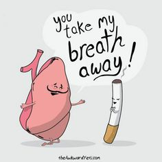 General health care tips on asbestos related diseases: Stay away from smoke and smokers