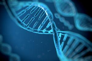 KRAS Gene Study
